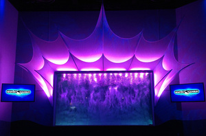 Robe Specified for Shark Ray Bay Dive Theater